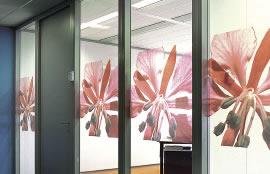 glasfolie op maat kantoor kleur